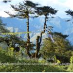 Bután. Trekking